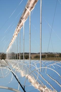ausra_solar_field.jpg